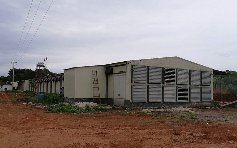 Vietnam Poultry House Project